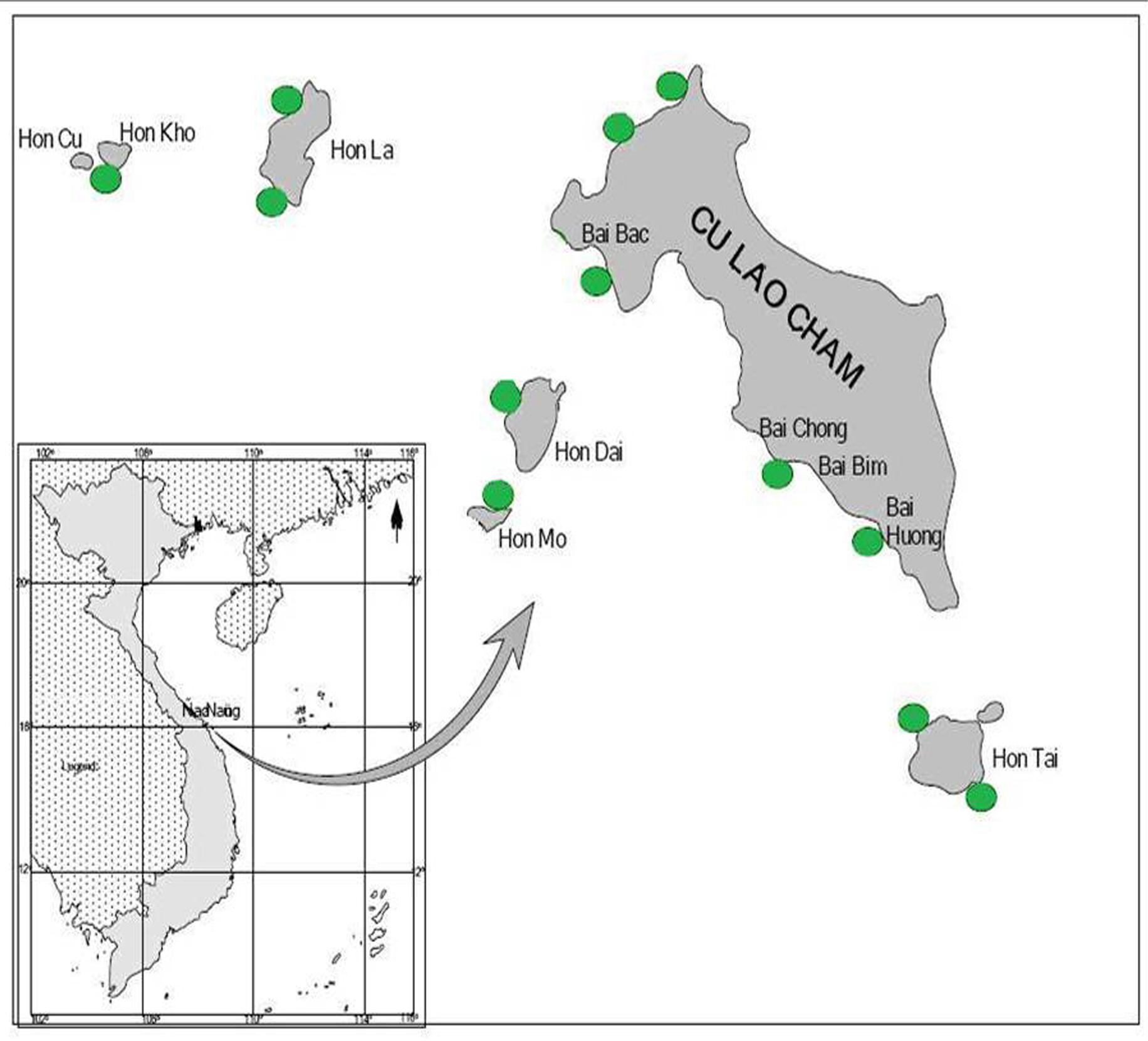 Bản đồ phân bổ san hô toàn vùng Cù Lao Chàm
